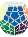 cubul lui Rubik Shengshou Cub Viteză lină Megaminx Viteză nivel profesional Cuburi Magice Crăciun Zuia Copiilor An Nou Cadou