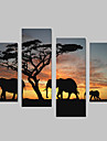 Animal Canvas Print Patru Panouri Gata să stea,Vertical