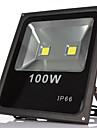 1st 100W Lawn Lights LED-strålkastare Vattentät Dekorativ Utomhusbelysning Varmvit Kallvit 85-265V