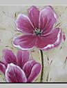 Pictat manual Floral/Botanic Pătrat, Modern Stil European pânză Hang-pictate pictură în ulei Pagina de decorare Un Panou