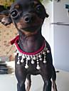 Katt Hund Halsband Elektronblixt Kärlek PU läder Svart Röd Blå Rosa