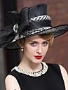 Pană In Diadema-Nuntă Ocazie specială Informal Exterior Pălărioare Pălării/Căciuli 1 Bucată