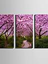 Blommig/Botanisk Moderna Europeisk Stil, Tre paneler Duk Vertikal Tryck väggdekor Hem-dekoration