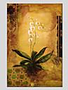 Pictat manual Floral/Botanic Modern Un Panou Canava Hang-pictate pictură în ulei For Pagina de decorare