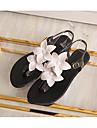 Dam Skor PVC Läder Sommar Komfort Sandaler Platt klack Öppen tå Svart / Beige / Rosa