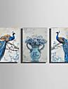 Εμπριμέ Κυλινδρικές καμβά εκτυπώσεις - Ζώα Άνθινο / Βοτανικό Μοντέρνα Τρίπτυχα